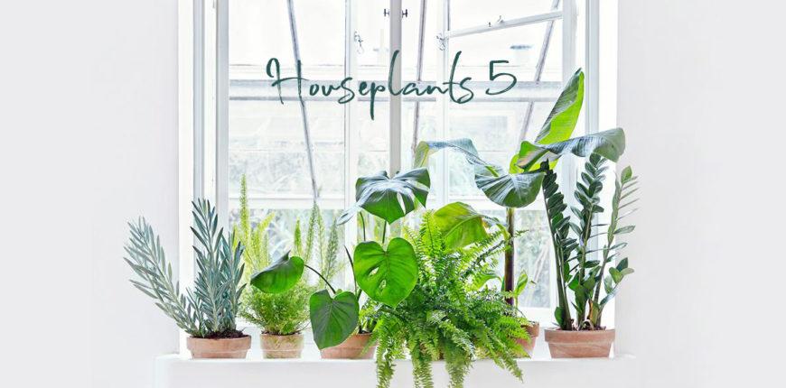 Porta piante da interno hobby e casa febbraio vedi anche - Scala decorativa ikea ...